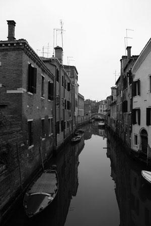 Venicereflection